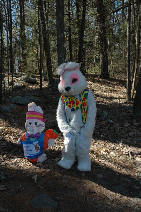 The Great Egg Hunt Bunny is on his way! 2019