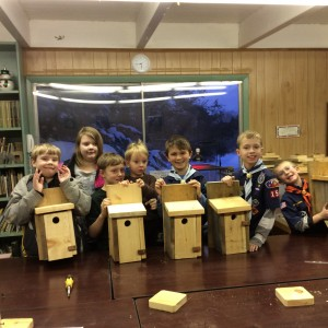 Scouts Bird House Building Brookfield 2015  2