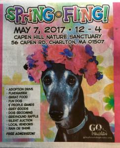 Greyhound Spring Fling
