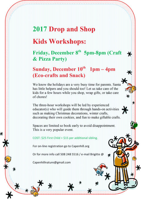 Drop and Shop Holiday Workshops
